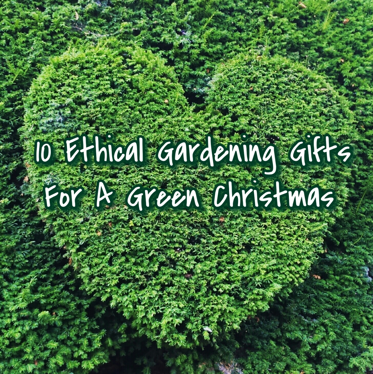 10 Ethical Gardening Gifts For A Green Christmas