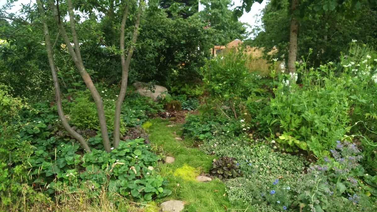 London Glades: Forest Garden Solutions For Urban Spaces at RHS Hampton Court Flower Show
