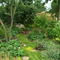 London Glades: Forest Garden Solutions For Urban Spaces