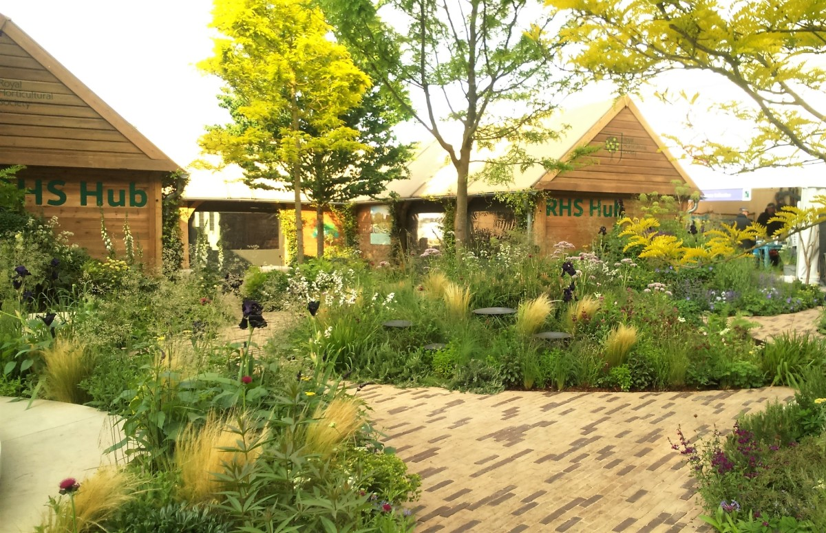 Health, Wellbeing and Sustainability at the RHS Chelsea Flower Show