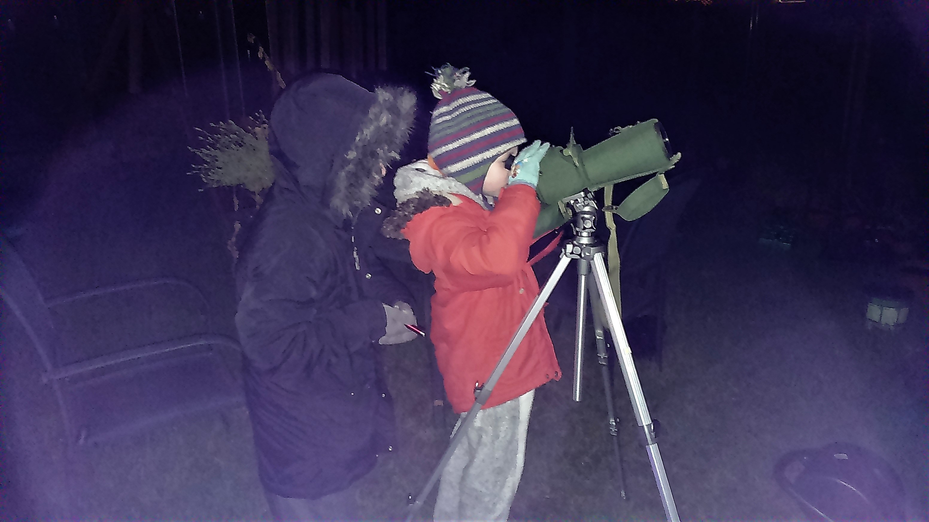 Nic Wilson - Star Gazing